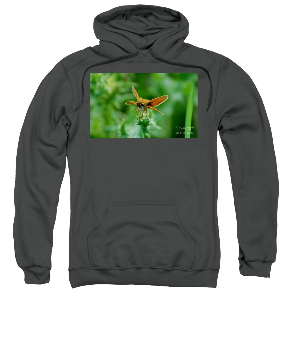 Landscape Sweatshirt featuring the photograph Mothera by David Lane