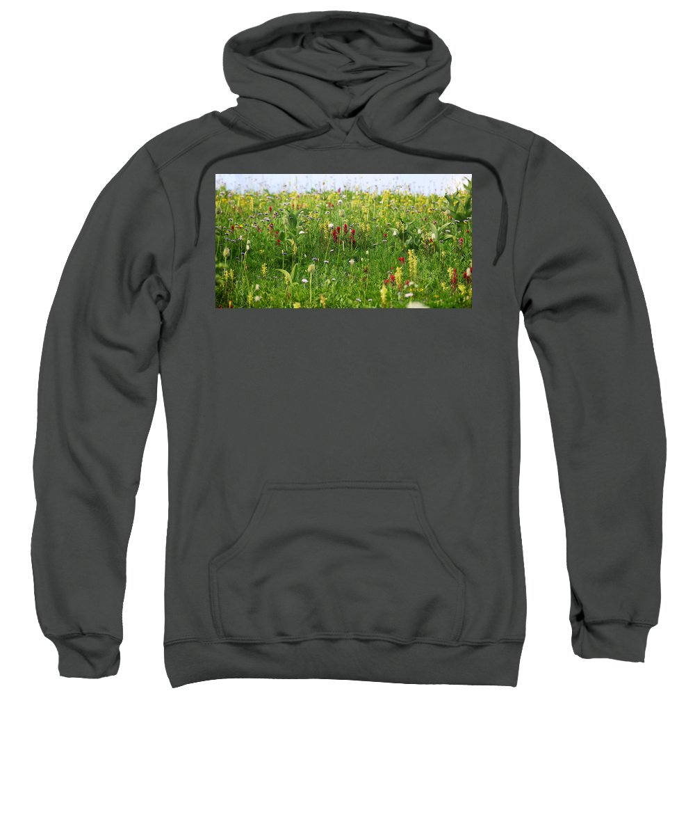 Fine Art Photography Sweatshirt featuring the photograph Mountain Flowers by David Lee Thompson