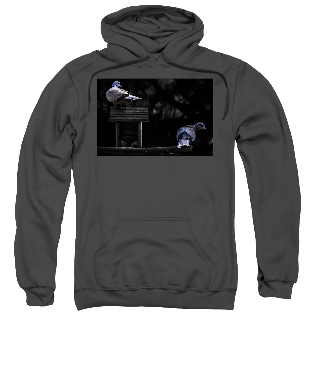 Doves Sweatshirt featuring the photograph Mr. And Mrs. Dove by Wolfgang Stocker