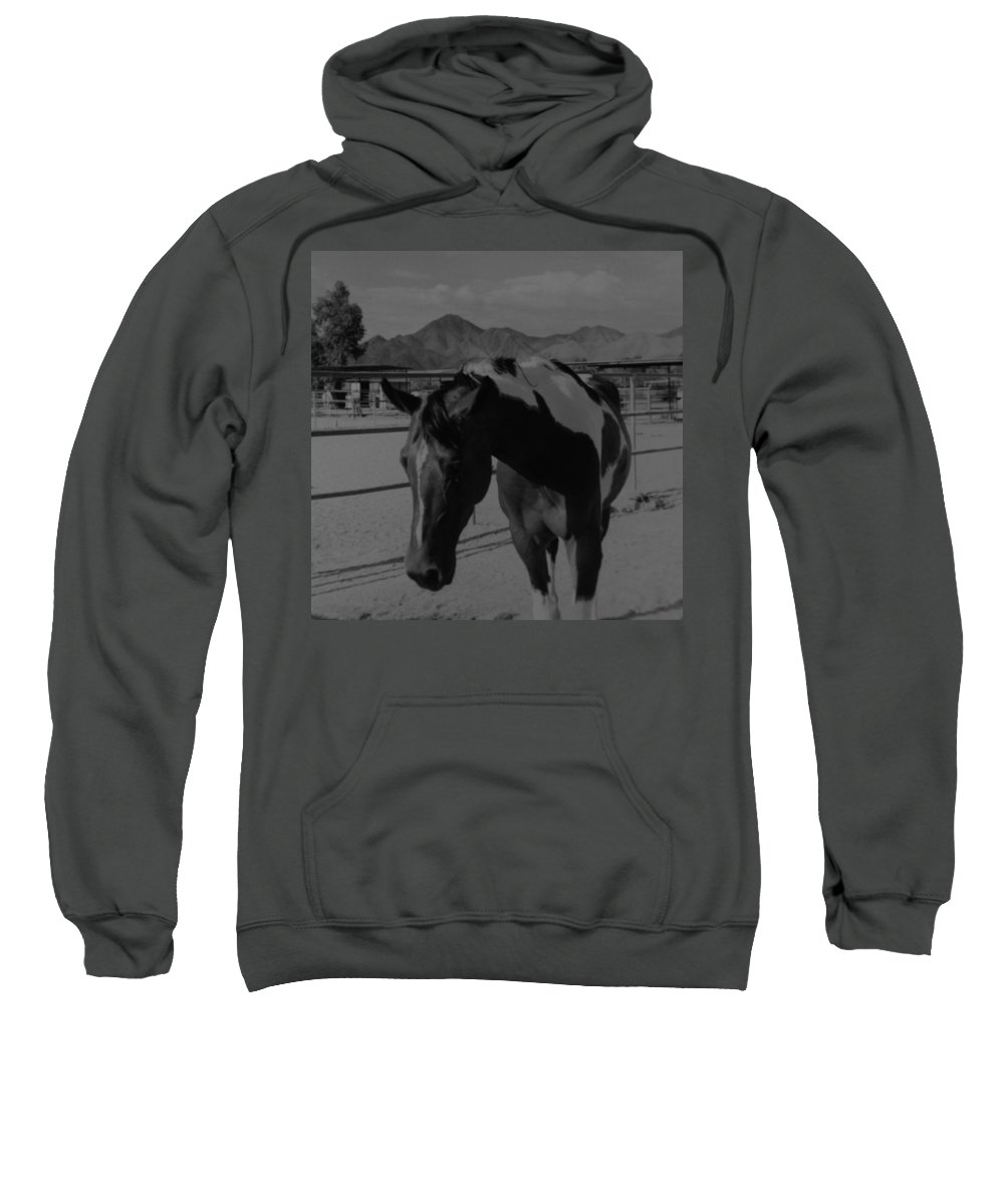 Black And White Sweatshirt featuring the photograph Mr Ed In Black And White by Rob Hans