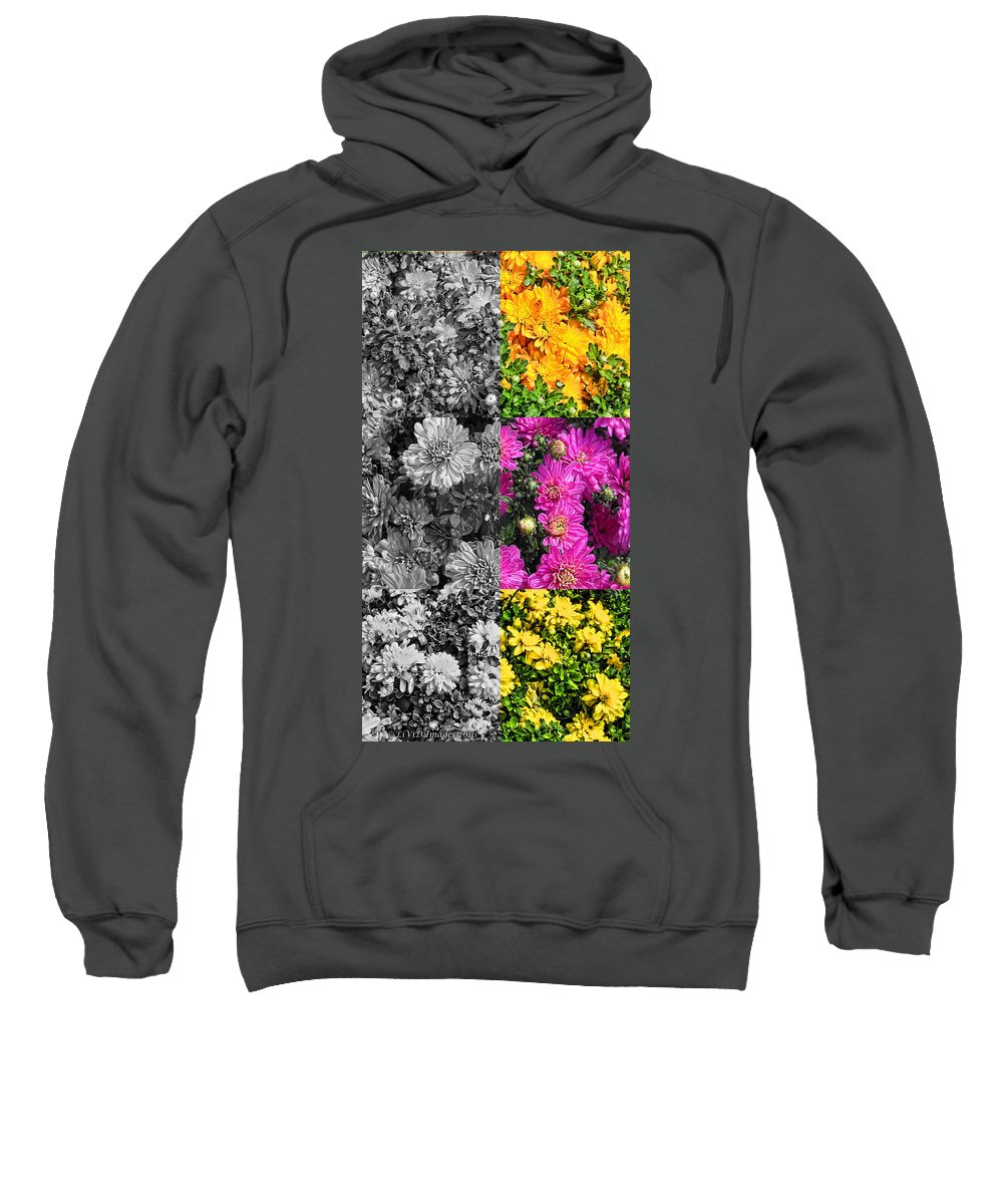 Flowers Sweatshirt featuring the photograph Mums The Word by Kristie Bonnewell