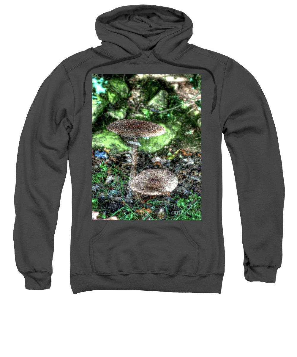 Mushroom Sweatshirt featuring the photograph Mushrooms Hdr by P Donovan