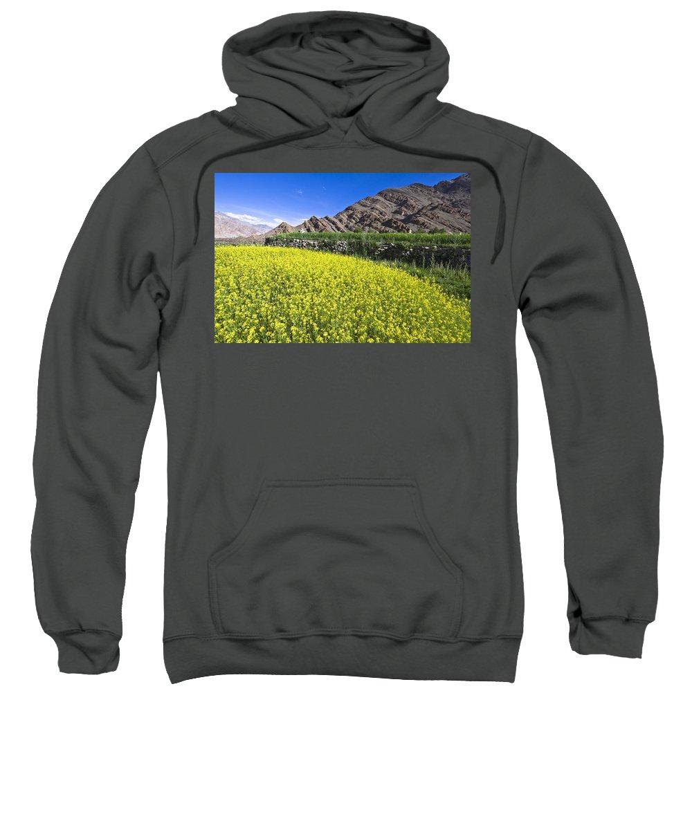Mustard Sweatshirt featuring the photograph Mustard Field, Hemis, 2007 by Hitendra SINKAR