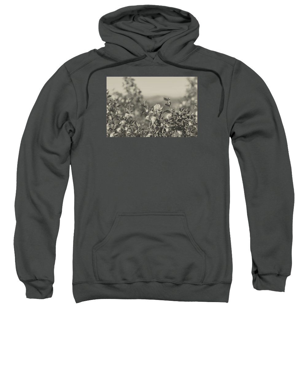 Nature Sweatshirt featuring the photograph Muted Beauty 2 by Sarah Jane Thompson