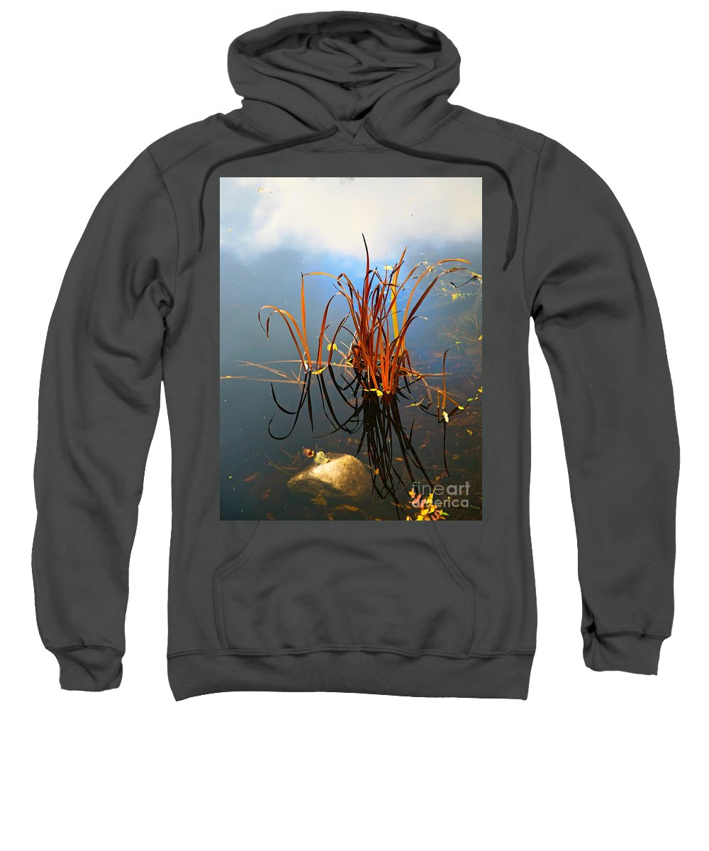 Plant Sweatshirt featuring the photograph My Art Prize In Grand Rapids Mi by Robert Pearson