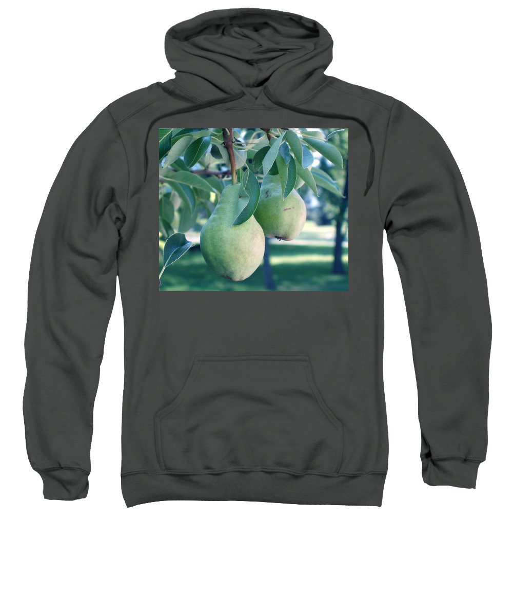 Pears Sweatshirt featuring the painting My Brothers Pear Tree by Wayne Potrafka