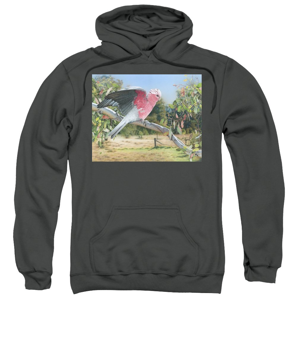 Galah Sweatshirt featuring the painting My Country - Galah by Frances McMahon
