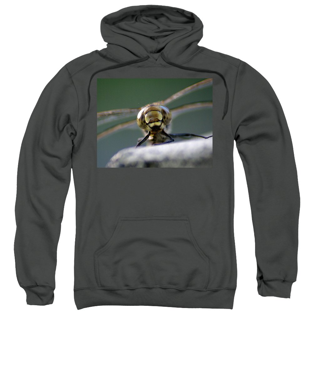 Dragonfly Sweatshirt featuring the photograph My Friend Vince The Dragonfly by Ben Upham III