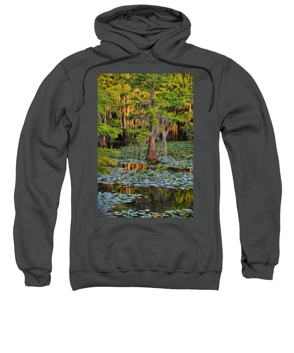 Bog Sweatshirt featuring the photograph Naked by Skip Hunt