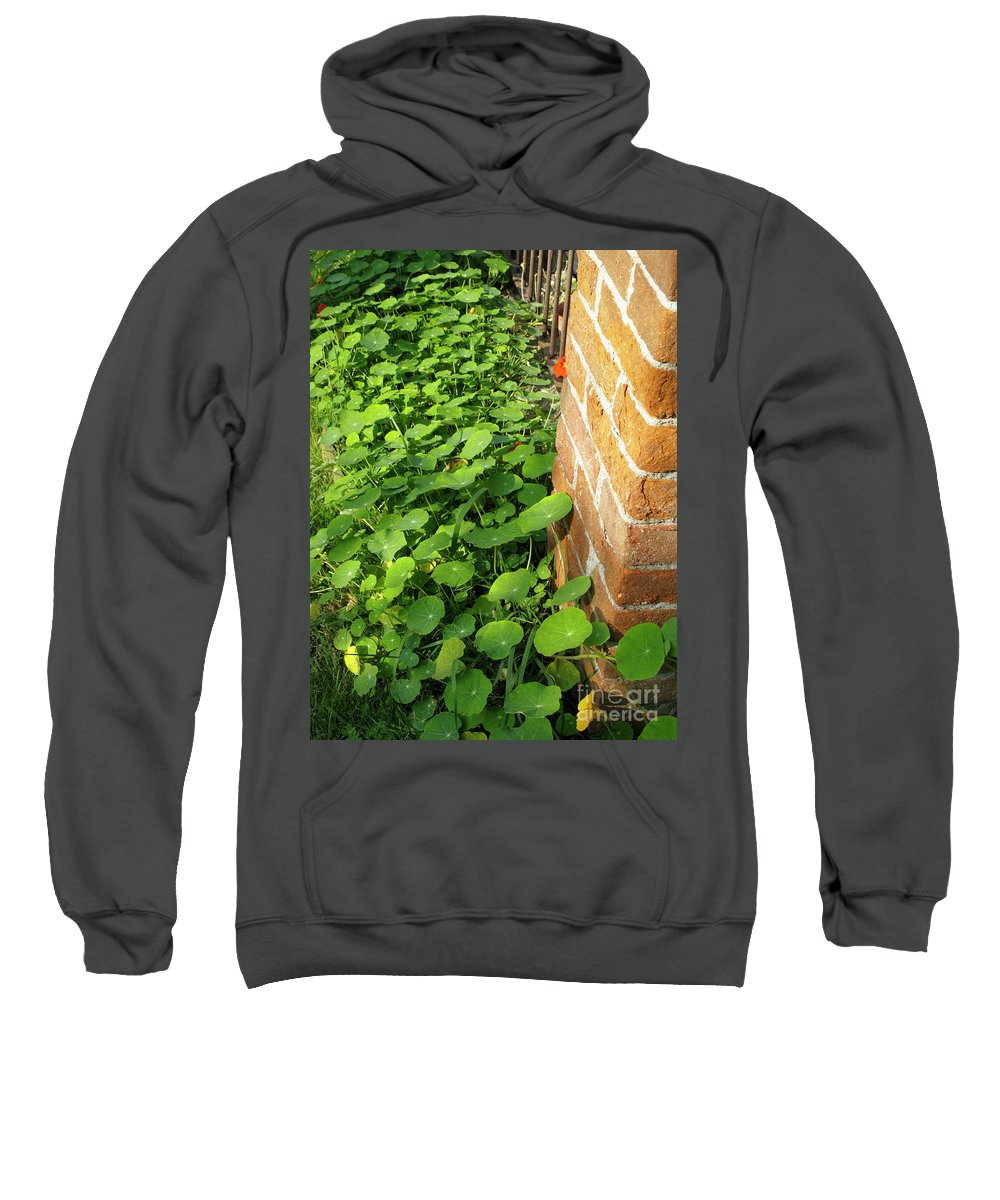 Vertical Sweatshirt featuring the photograph Nasturtium Leaves by Stefania Levi