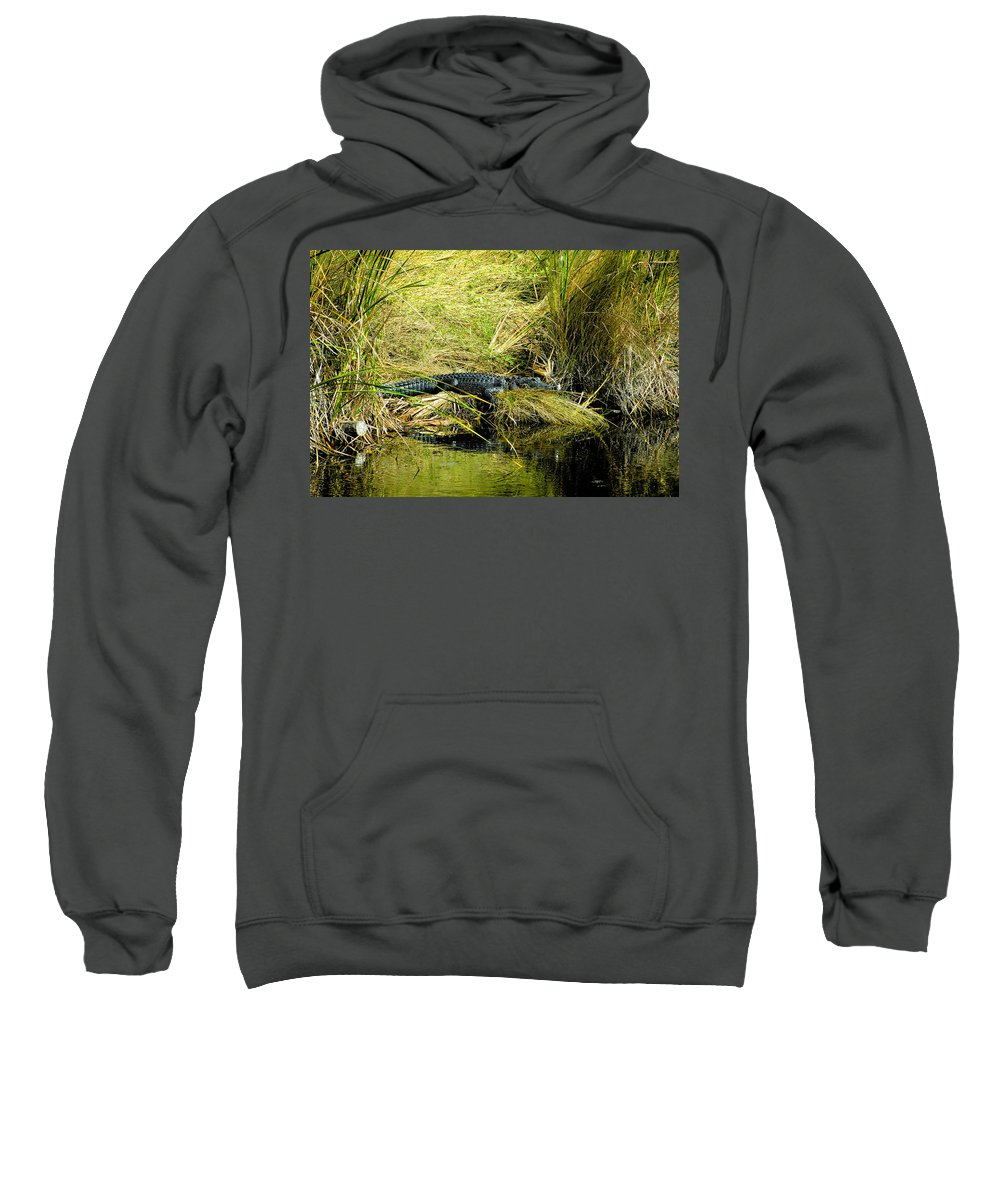 Art Sweatshirt featuring the painting Native Evergladien by David Lee Thompson