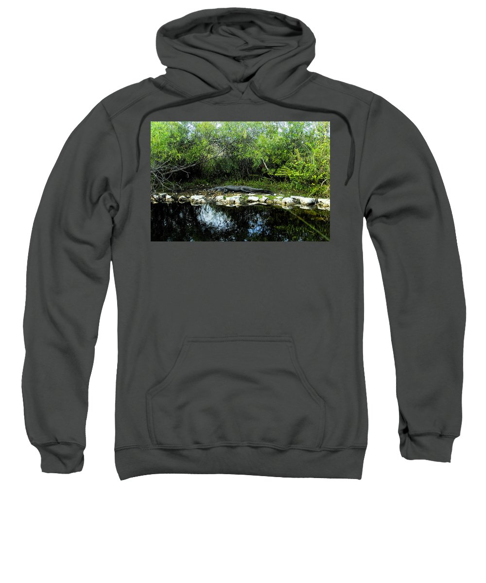 Art Sweatshirt featuring the painting Native Floridian by David Lee Thompson
