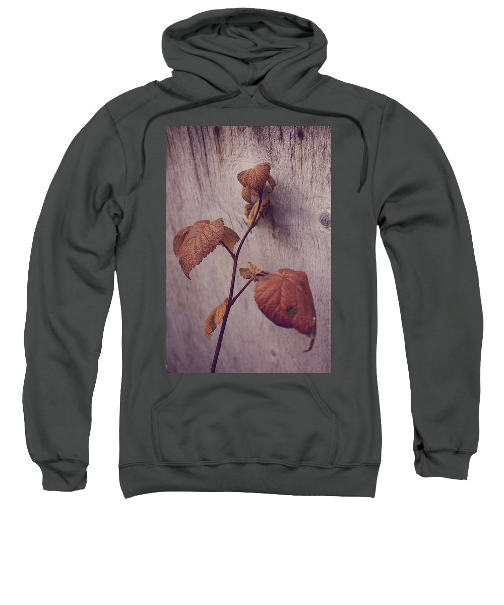 Flowers Sweatshirt featuring the photograph Native Land by The Artist Project
