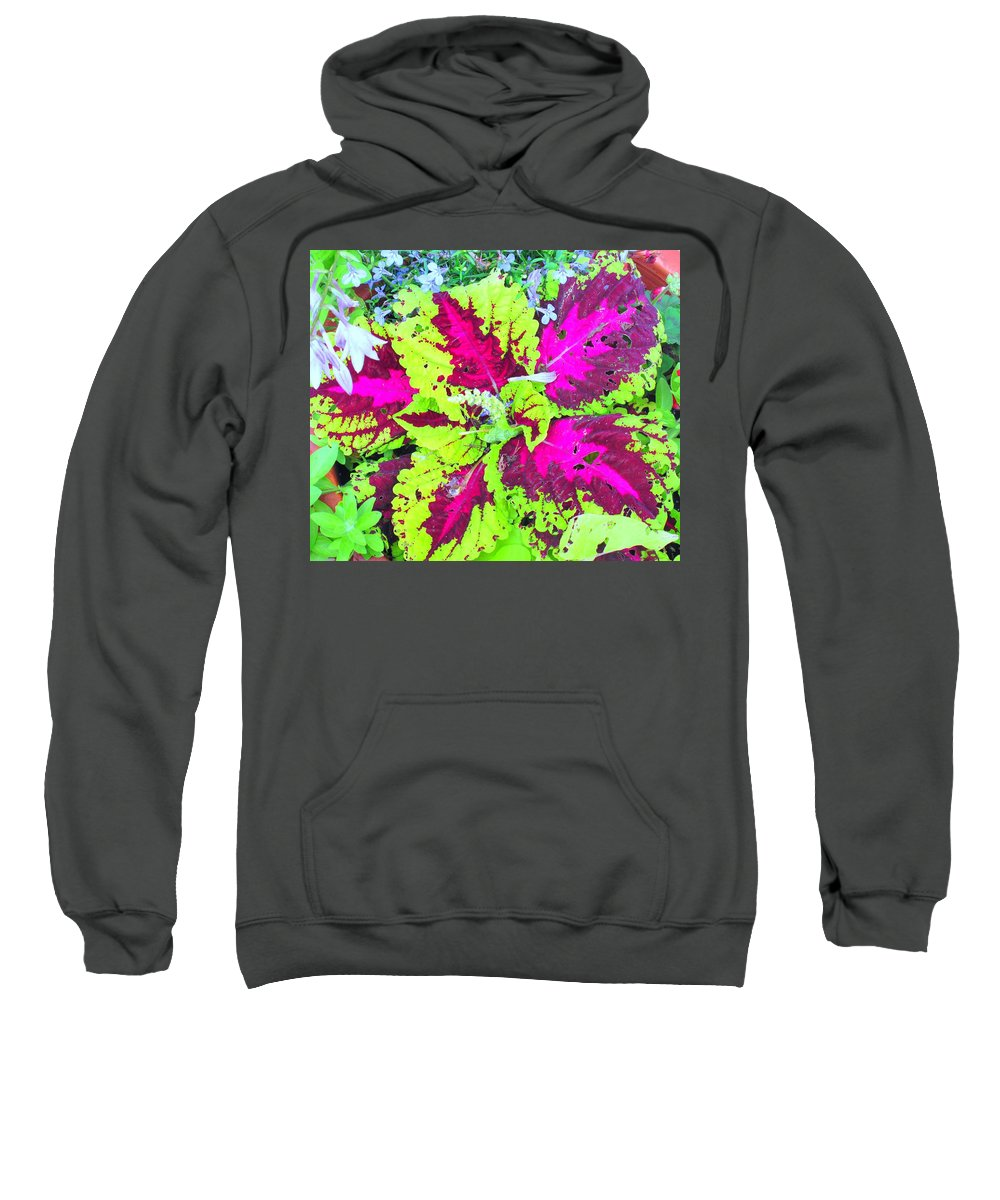 Flower Sweatshirt featuring the photograph Natural Abstraction by Ian MacDonald