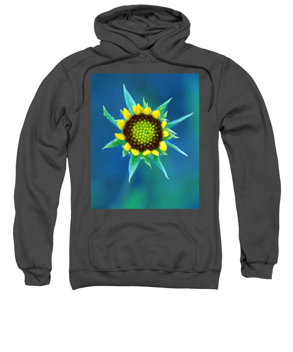 Flowers Sweatshirt featuring the photograph Natural Art by Ben Upham III