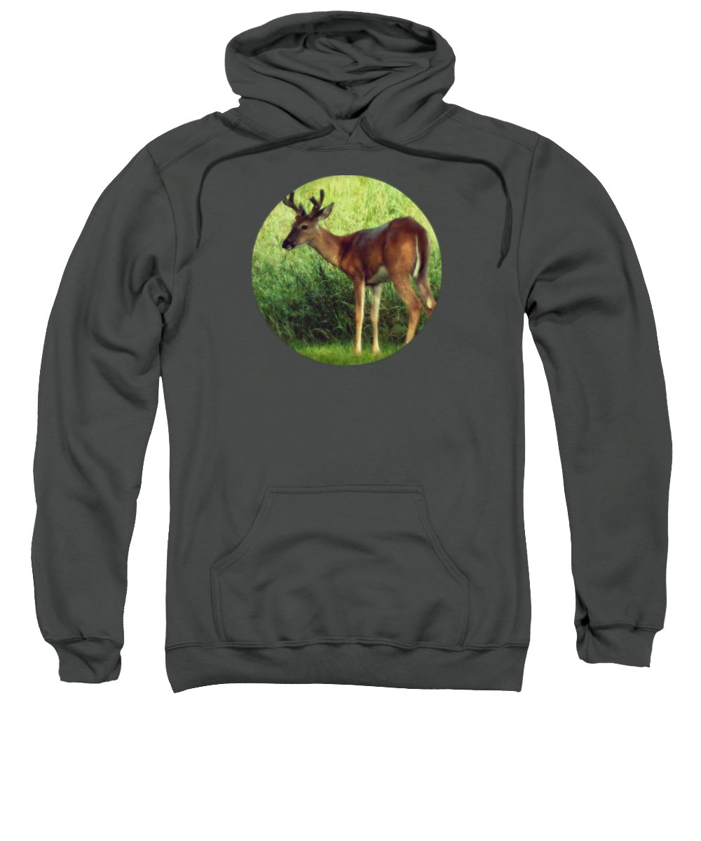 Deer Sweatshirt featuring the photograph Natural Beauty - Original Version by Mary Wolf