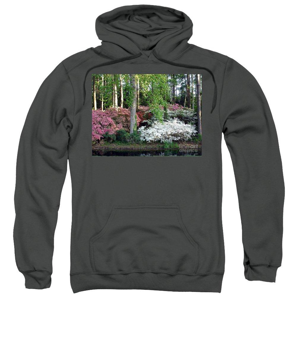 Landscape Sweatshirt featuring the photograph Nature 2 by Shelley Jones