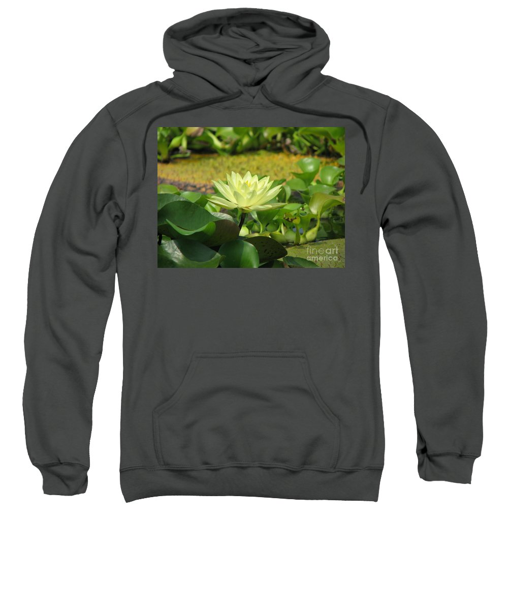 Nature Sweatshirt featuring the photograph Nature by Amanda Barcon
