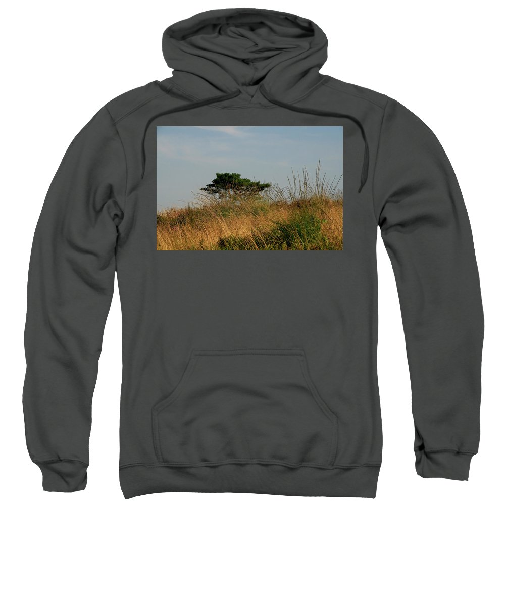 Tree Sweatshirt featuring the photograph Nature Bonzai In The Evening Sun by Erin Larcher