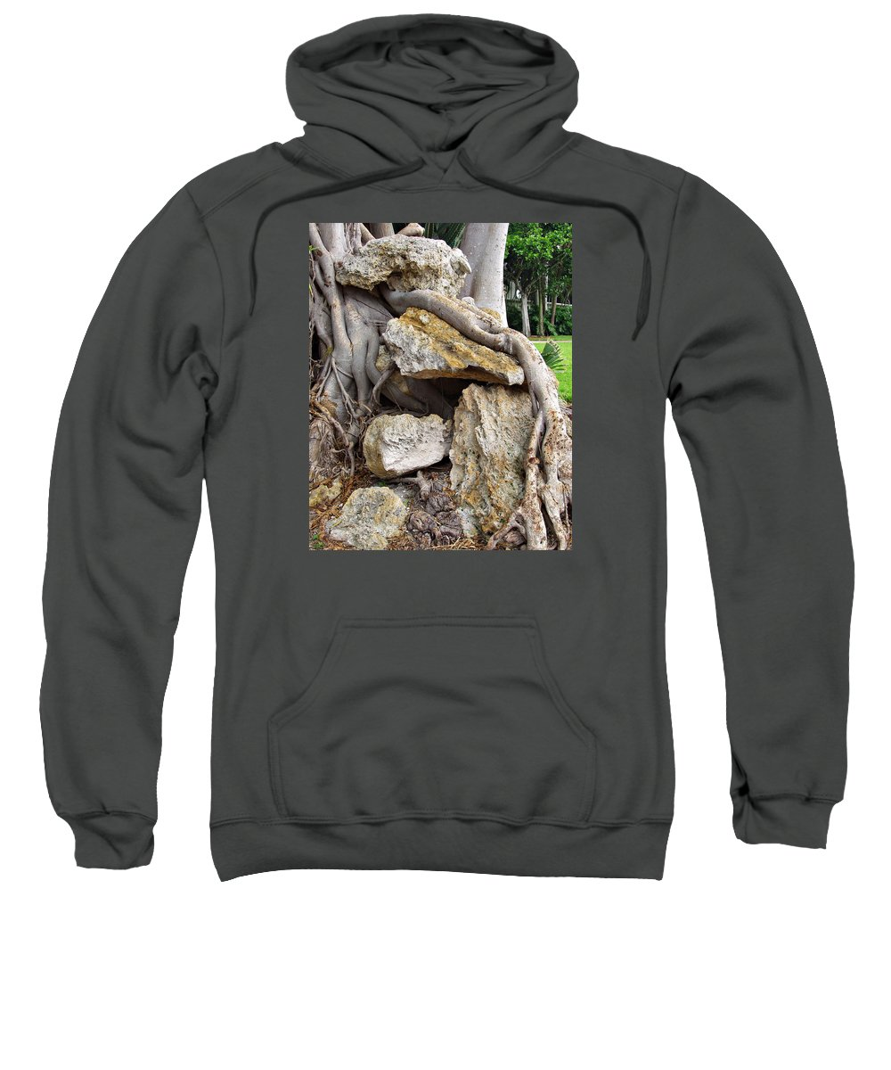Tree Sweatshirt featuring the photograph Nature Vs Man by Bruce Roker