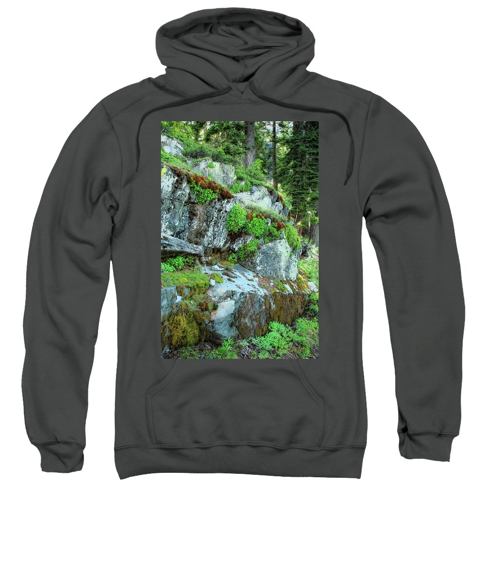Nature Sweatshirt featuring the photograph Nature's Collage by Donna Blackhall