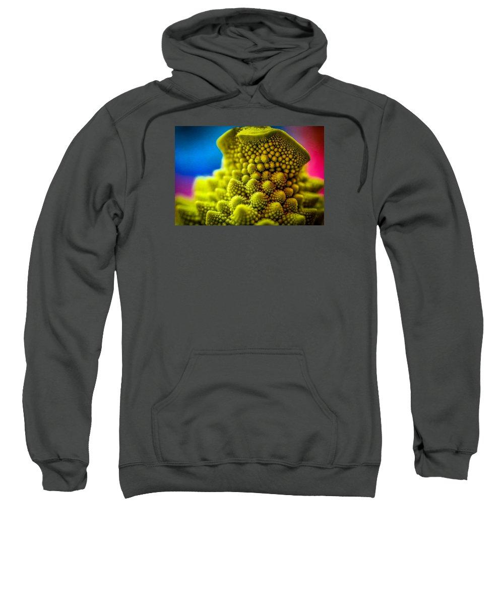 Romanesco Sweatshirt featuring the photograph Nature's Fractals by Richard Copeland