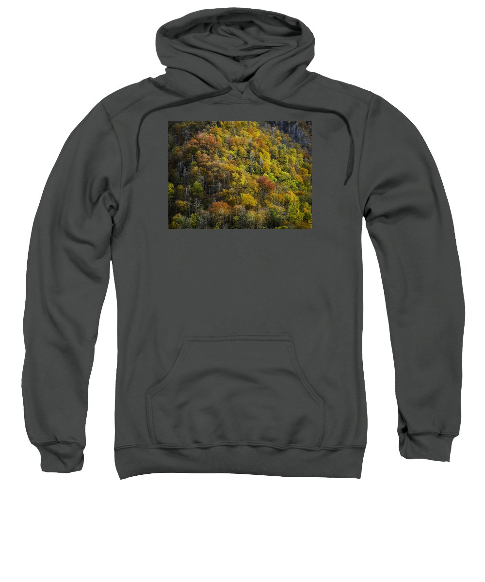 Great Sweatshirt featuring the photograph Nc Fall Foliage 0559 by Bob Neiman