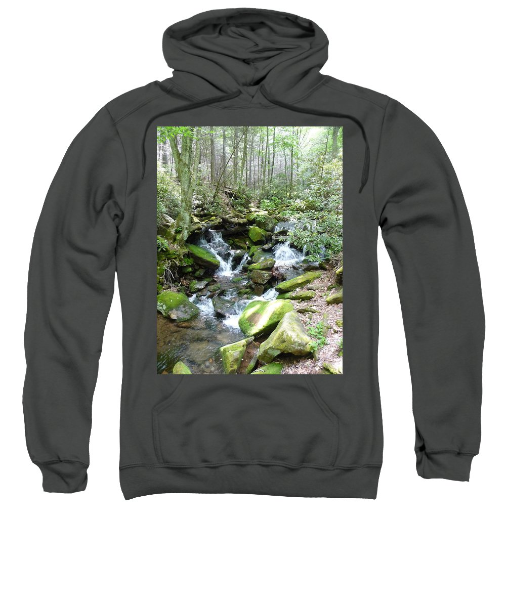 Nc Forests Sweatshirt featuring the photograph Near The Grotto by Joel Deutsch
