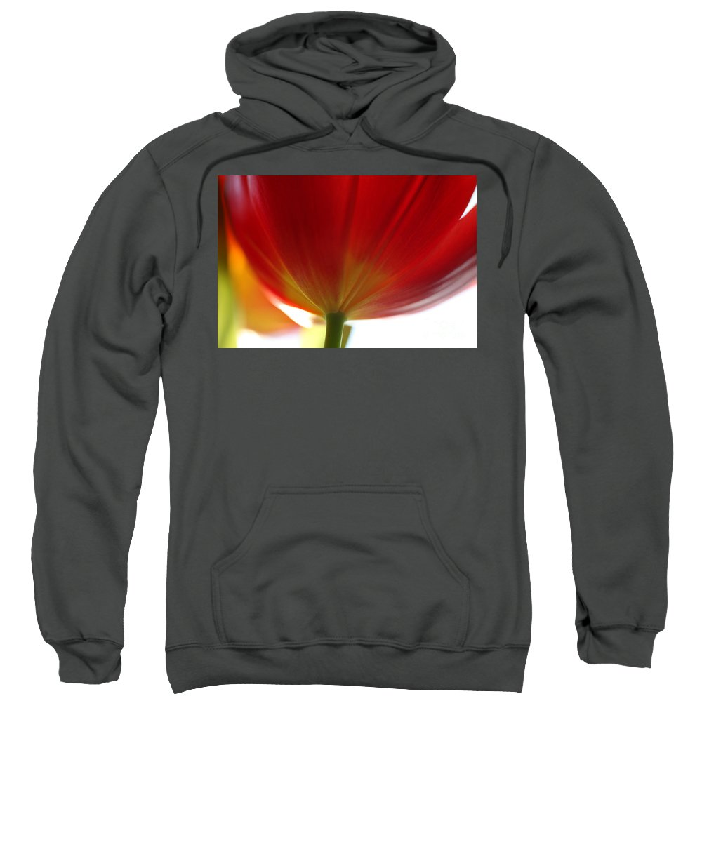 Tulip Sweatshirt featuring the photograph New Day by Amanda Barcon