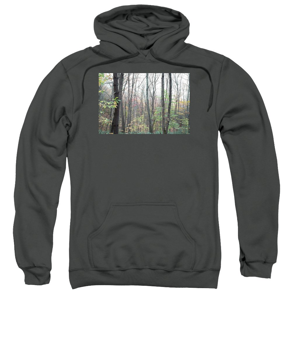 Forest Sweatshirt featuring the photograph New England Forest by Black Crow Landing
