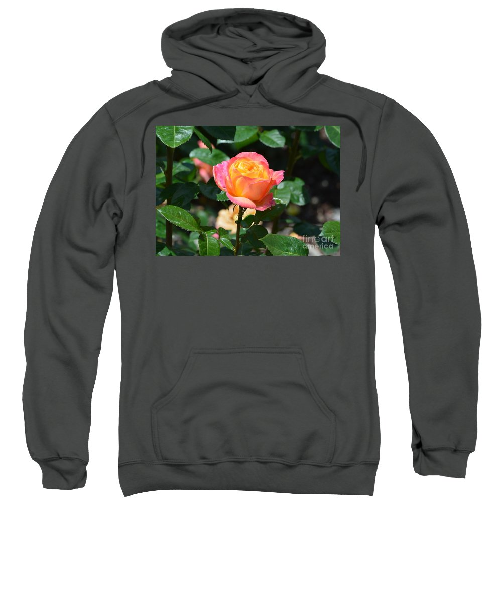 New Life Sweatshirt featuring the photograph New Life by Maria Urso