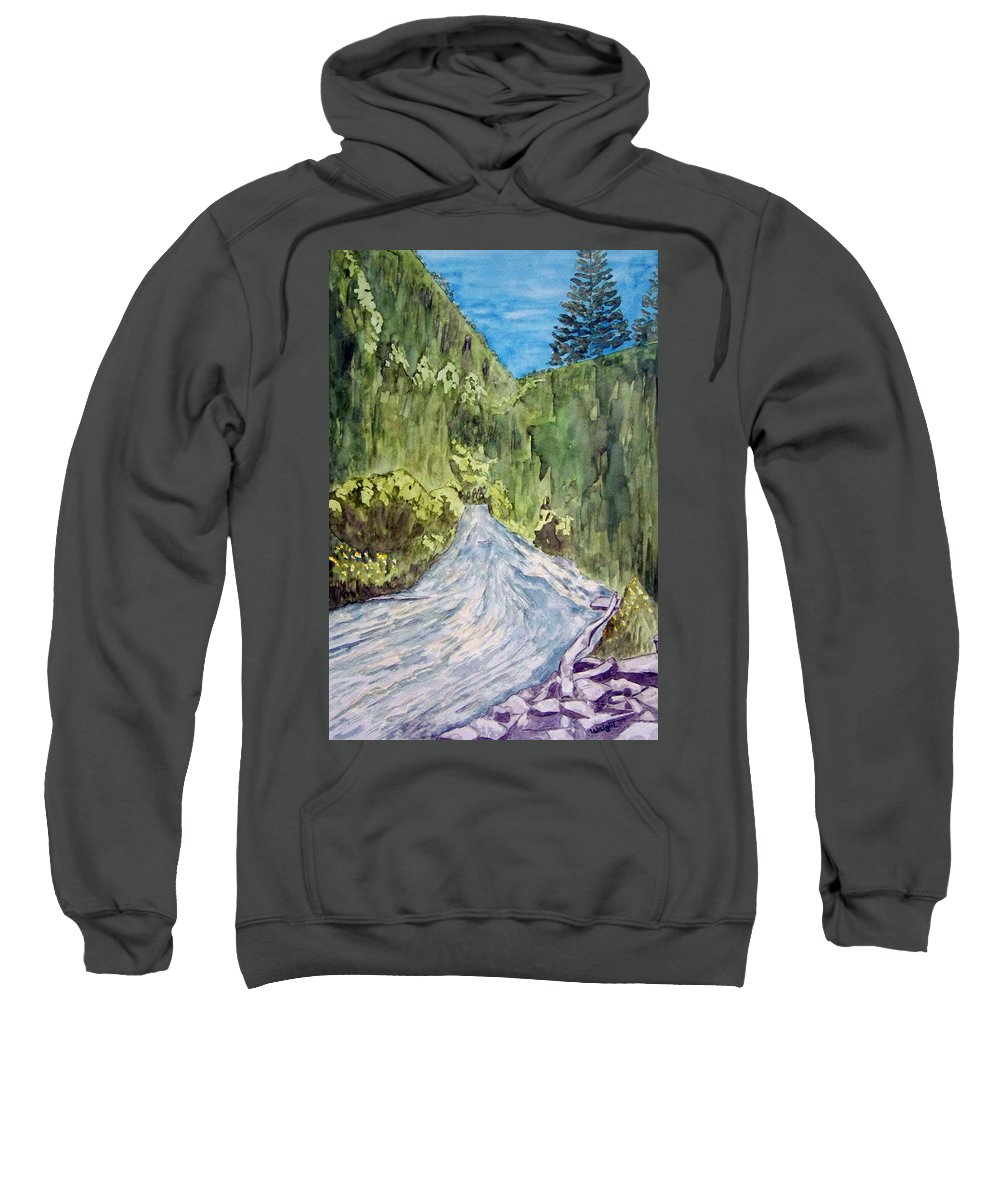 New Mexico Art Sweatshirt featuring the painting New Mexico Canyon Impression by Larry Wright