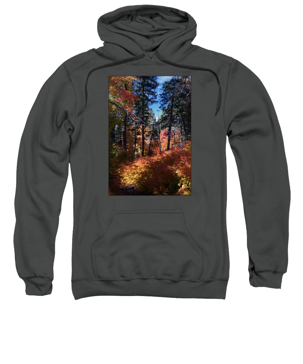 Landscape Sweatshirt featuring the photograph New Mexico Foliage by Ronnie Gilbert