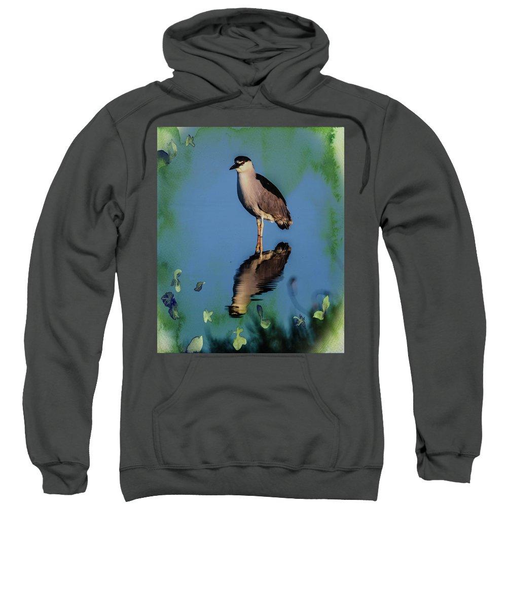 Bird Sweatshirt featuring the photograph Night Heron by John R Williams