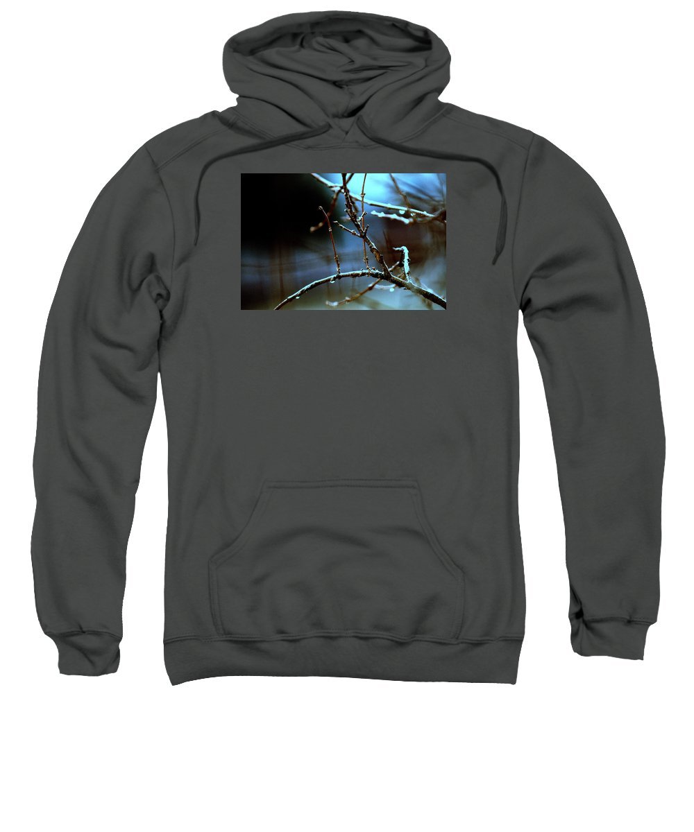 Night Sweatshirt featuring the photograph Nighttime In The Garden by Laurie Fraser