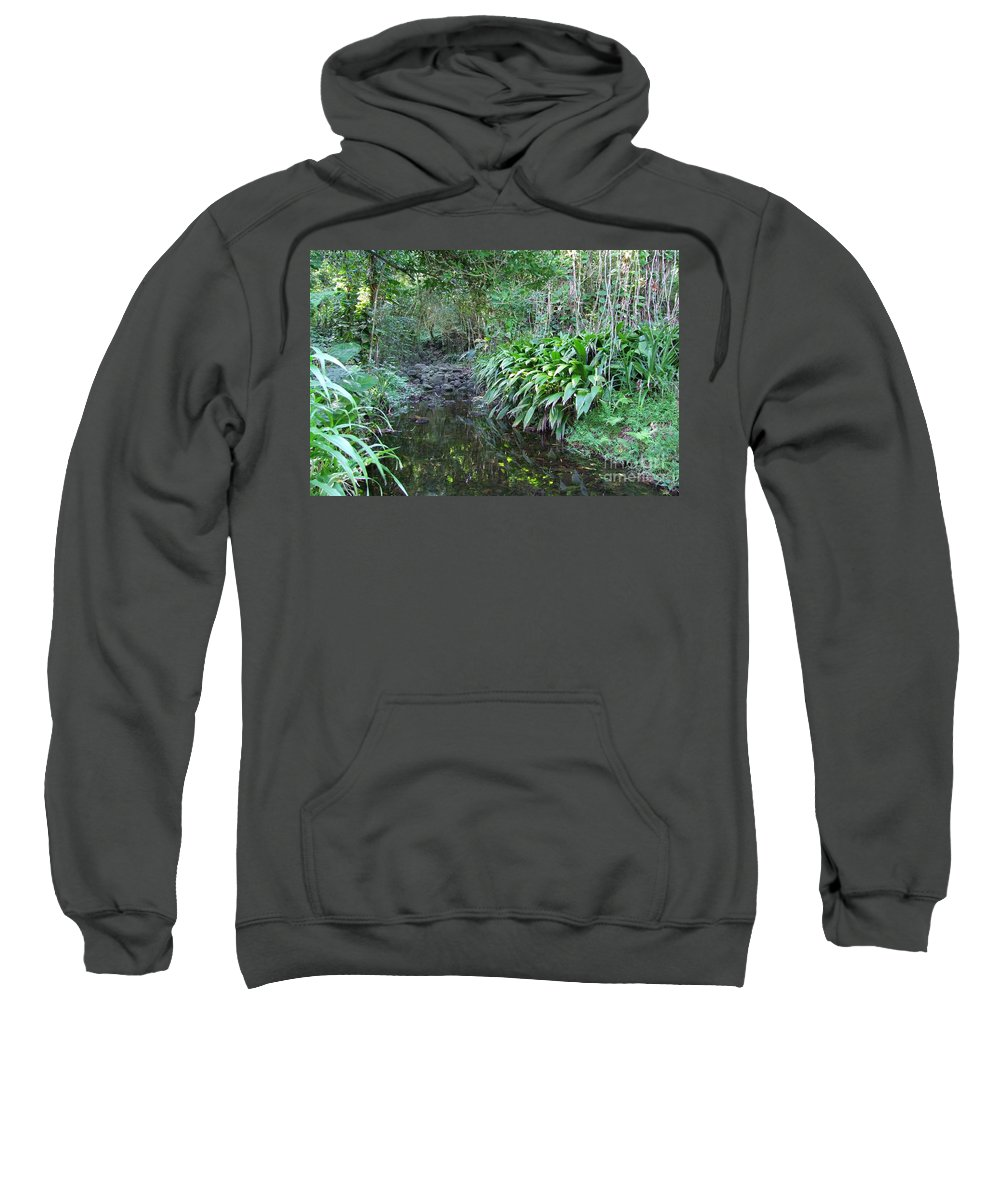 Mary Deal Sweatshirt featuring the photograph North Shore Forest Glade by Mary Deal