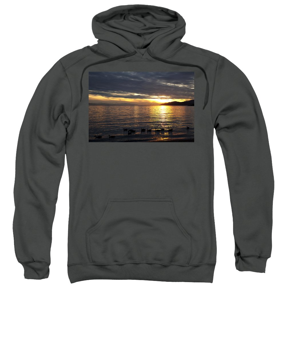 Vancouver Sweatshirt featuring the photograph North Shore Geese by Monte Arnold