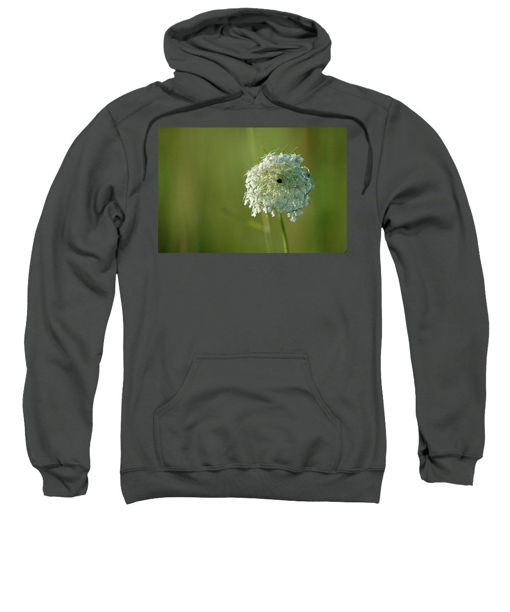 Nature Sweatshirt featuring the photograph Not Just A Weed by Trish Hale