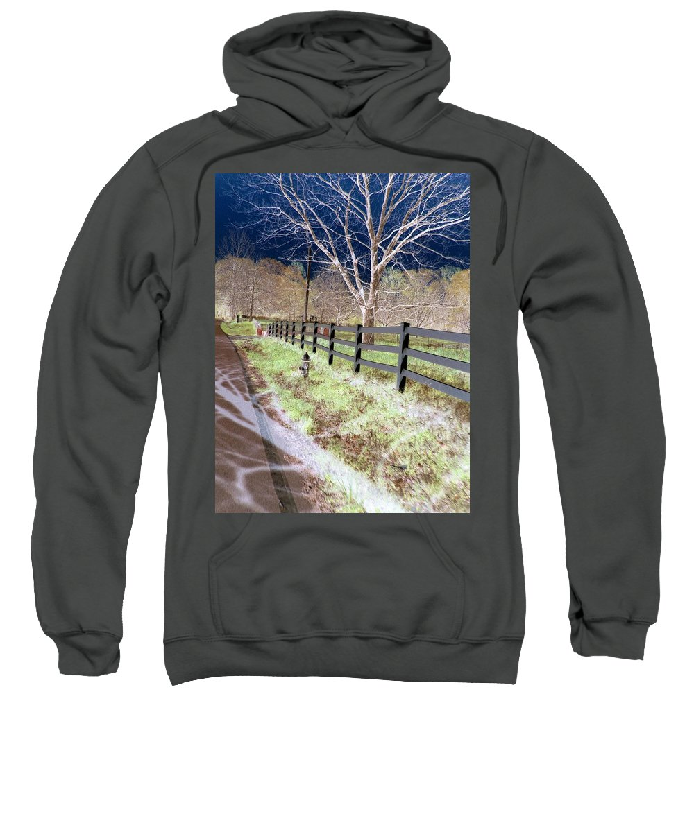 Tree Sweatshirt featuring the photograph Not So White by Charleen Treasures