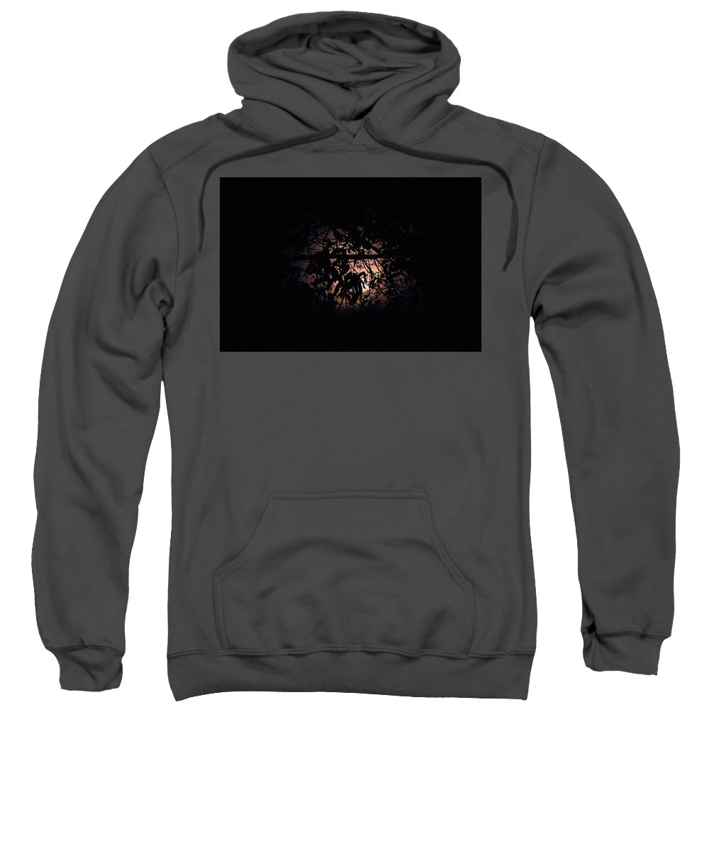 Sweatshirt featuring the photograph October Moon by Terry Brown