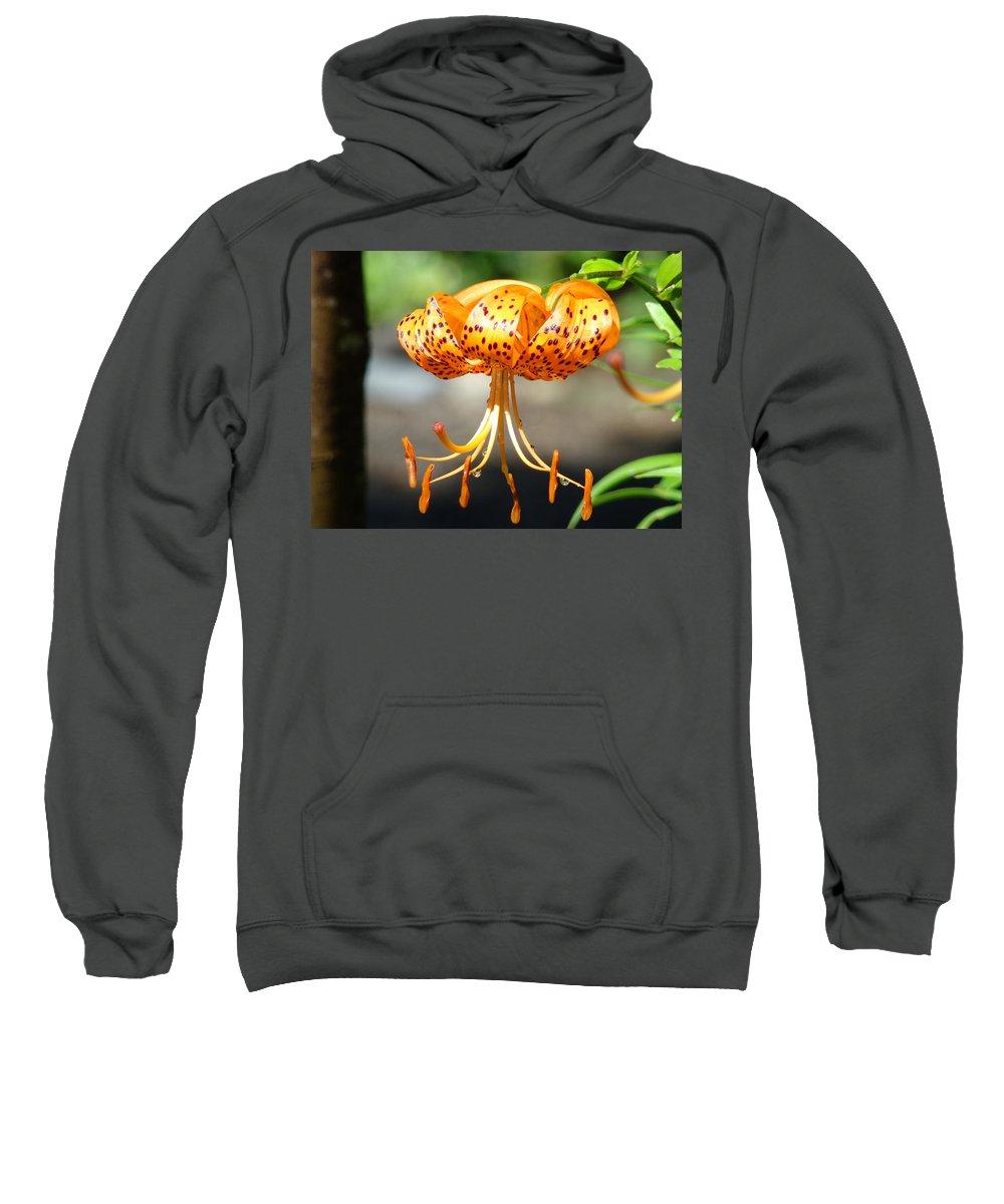 Lilies Sweatshirt featuring the photograph Office Art Master Garden Lily Flower Art Print Tiger Lily Baslee Troutman by Baslee Troutman