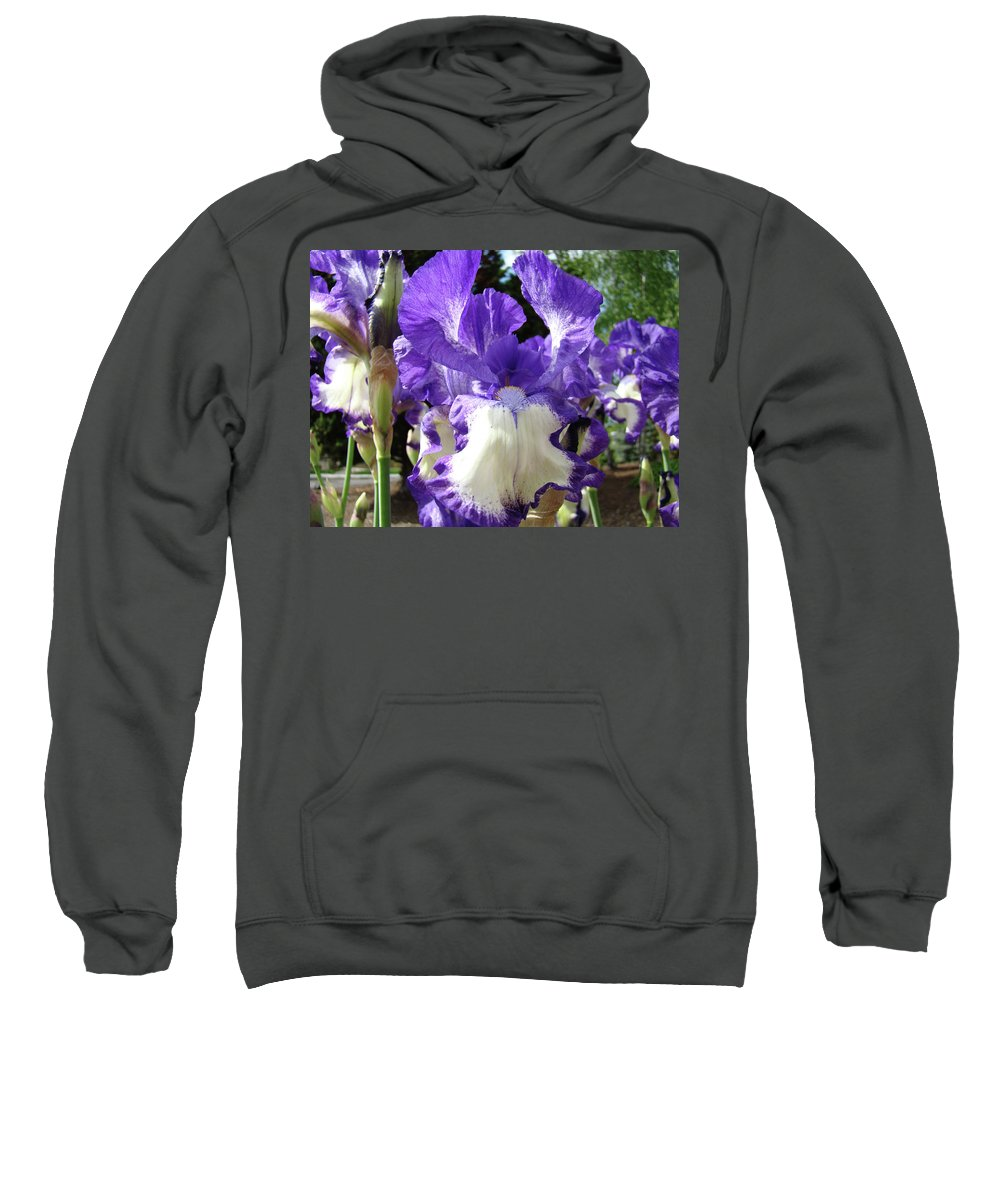 Floral Sweatshirt featuring the photograph Office Art Prints Irises Purple White Iris Flowers 39 Giclee Prints Baslee Troutman by Baslee Troutman