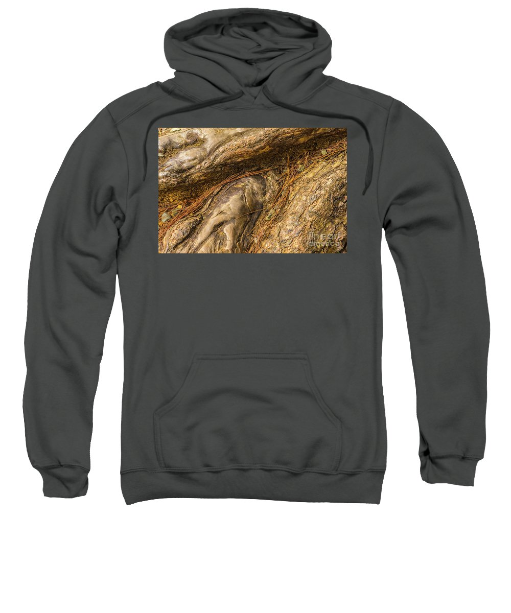 Wood Sweatshirt featuring the photograph Ol' Hickory by Donald Carr