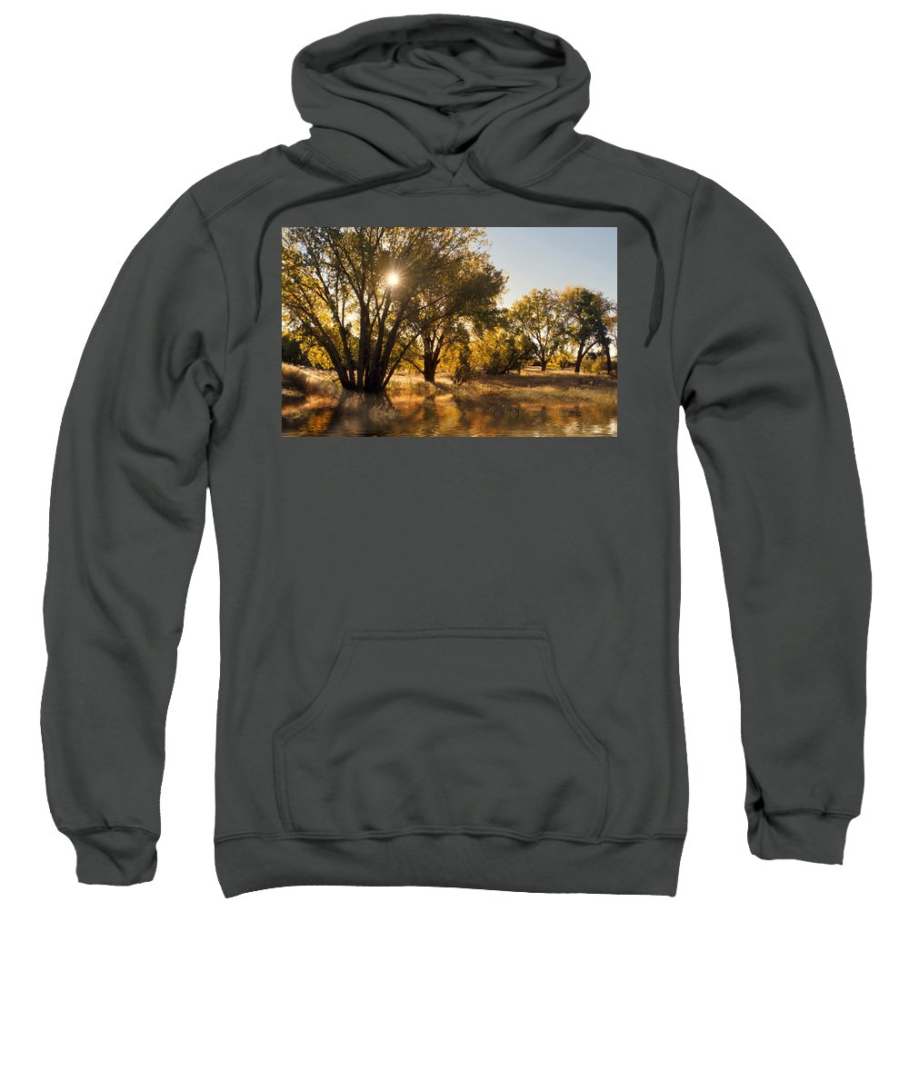 Ftrees Sweatshirt featuring the photograph Oliver Sunbursts by Jerry McElroy