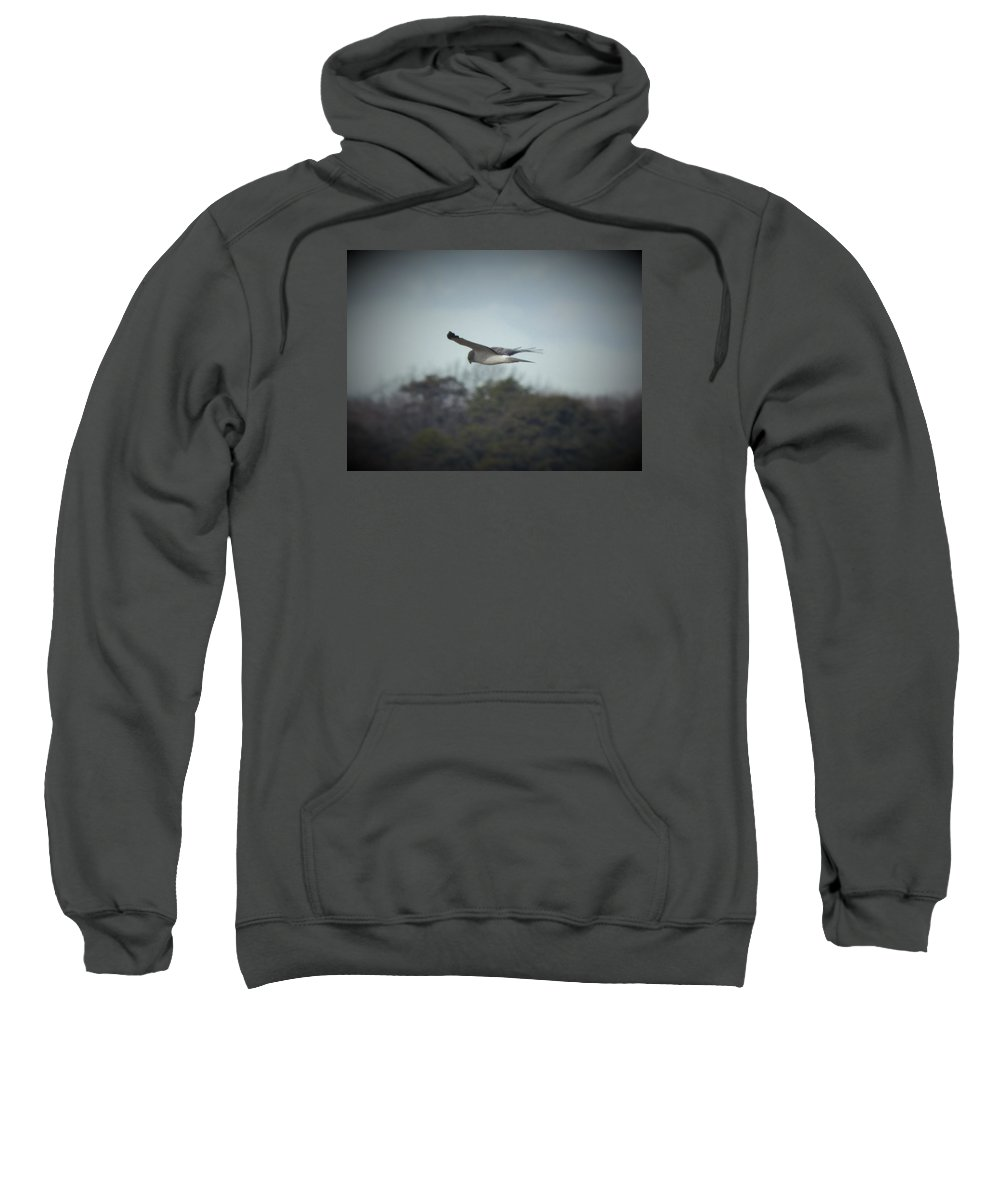 Owl Maine Snow Owl Bird Sweatshirt featuring the photograph On The Hunt by Scott Welton