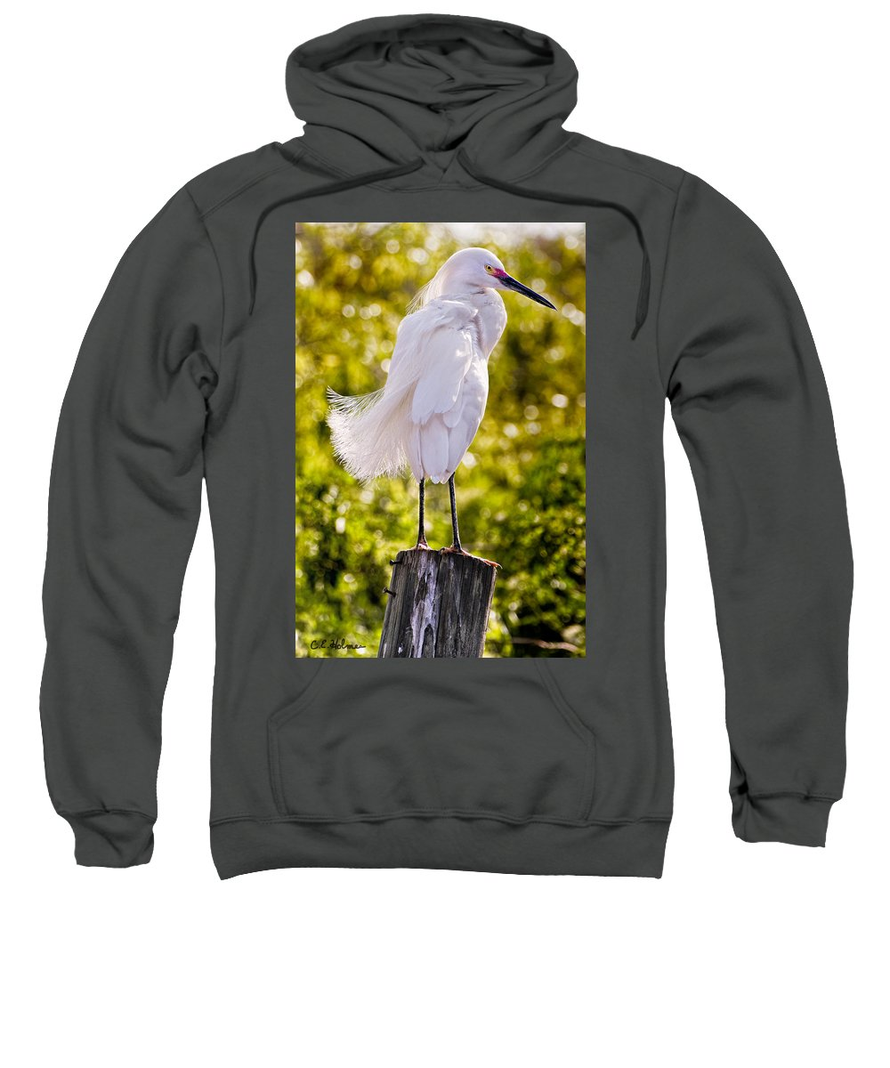snowy Egret Sweatshirt featuring the photograph On Watch by Christopher Holmes
