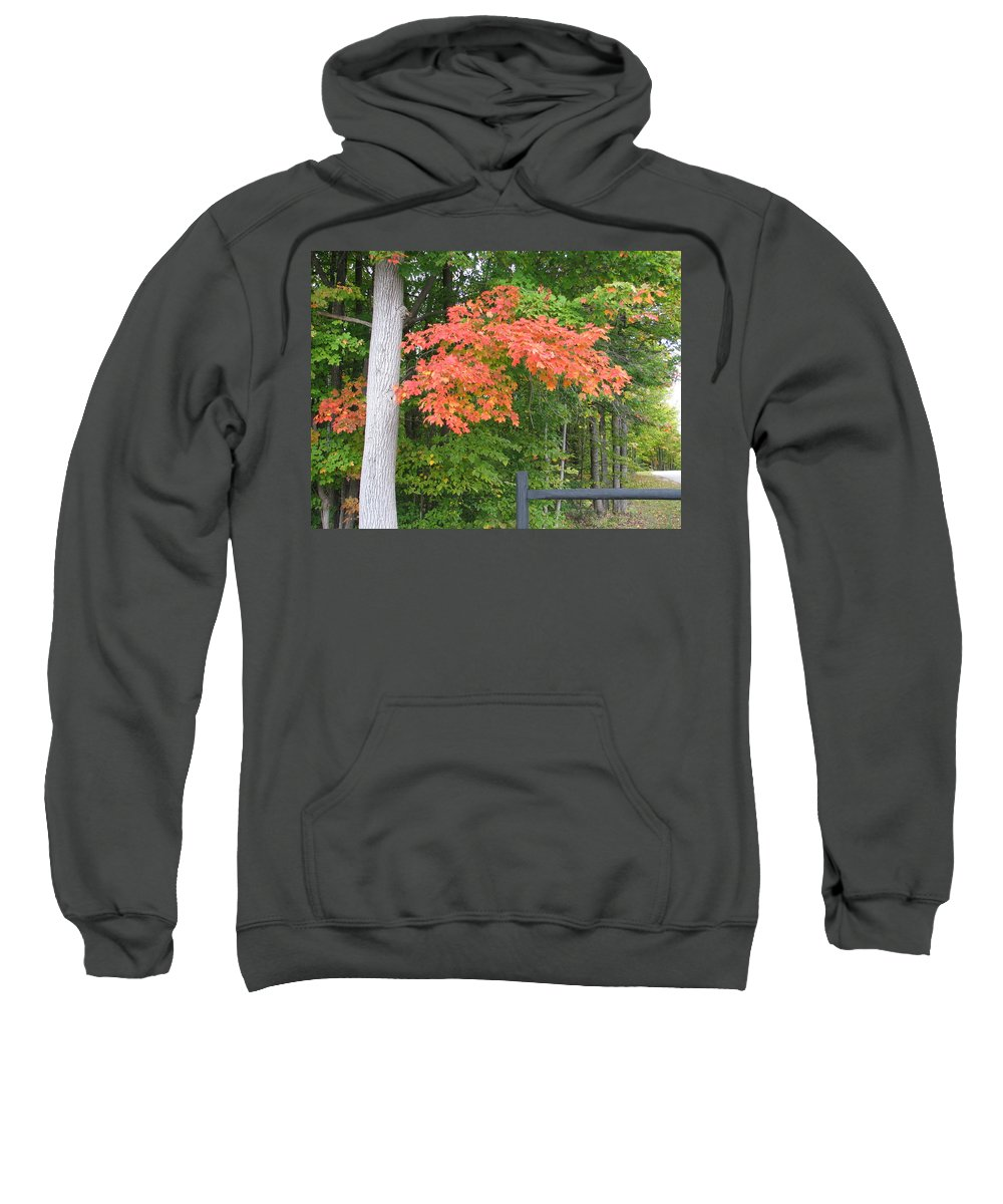 Fall Sweatshirt featuring the photograph Onaway by Kelly Mezzapelle