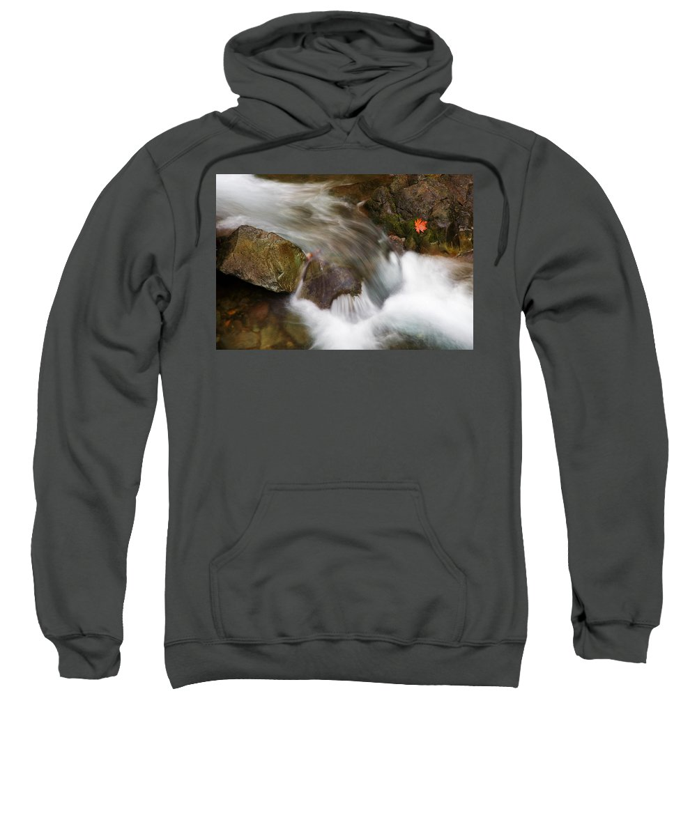 Washington Sweatshirt featuring the photograph One Left by Mike Dawson