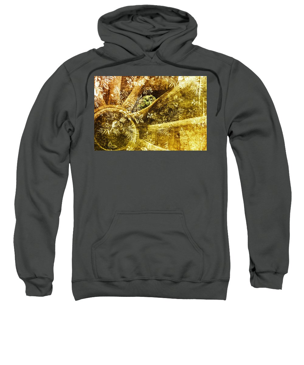 Toad Sweatshirt featuring the photograph One Small Space by Susan Capuano