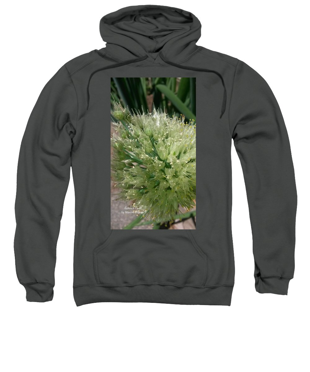 Onions Sweatshirt featuring the photograph Onion Head by Maxine Billings